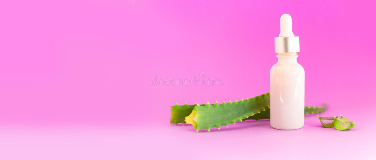 Glass bottle with aloe vera leaf cut into slices with dropper royalty free stock photo