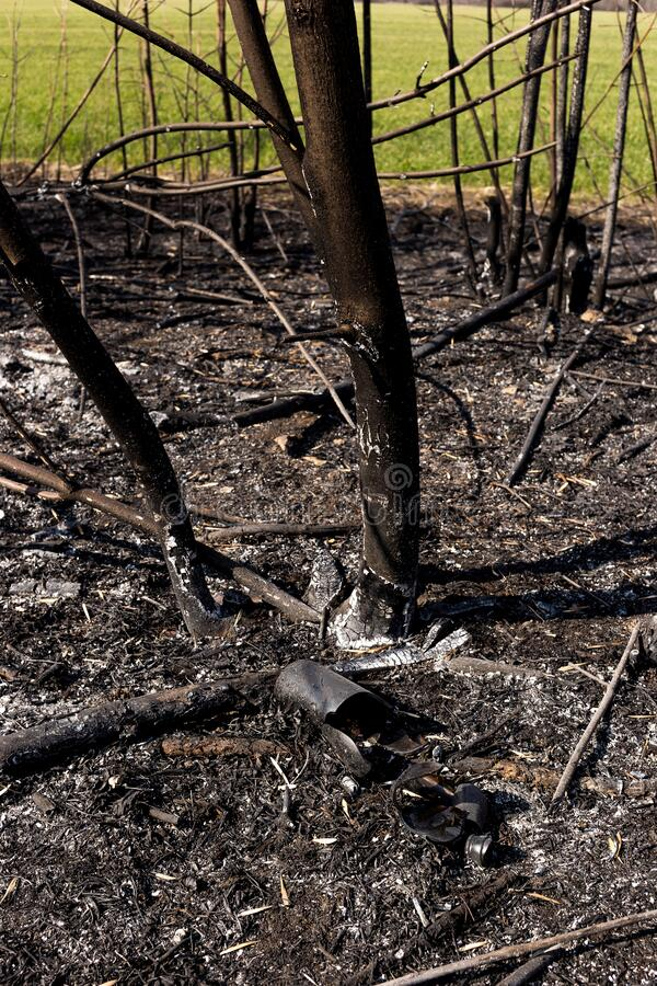 Glass bottle on the ground surrounded by ash. Forest fire. Environmental pollution royalty free stock photos