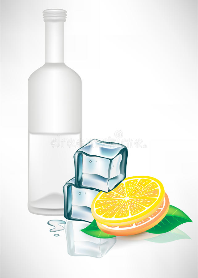 Download Glass Bottle With Ice Cubes And Lemon Stock Vector - Illustration of vodka, lifestyle: 21619980