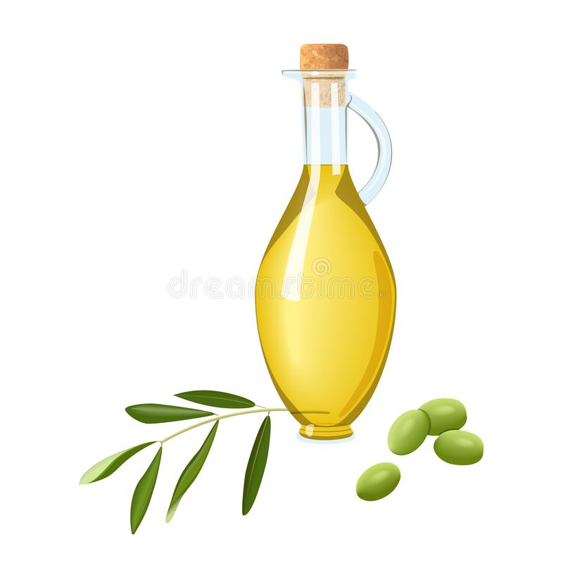 Glass bottle with olive oil, immature green olives branch and leaf. Card template text. Oilplant oilbearing crop. Glass bottle with olive oil, immature green royalty free stock images