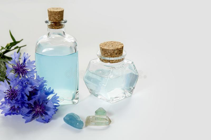 Glass bottles with blue cornflower flower water or oil on white background, SPA or herbal medicine concept royalty free stock photos
