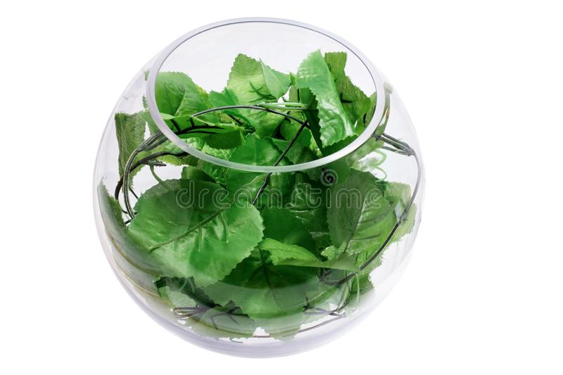 Glass Bowl with Ivy Leaves royalty free stock images
