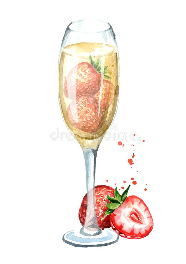 Glass of champagne with fresh strawberry. Watercolor hand drawn illustration isolated on white background. Glass of champagne with fresh strawberry. Watercolor stock illustration
