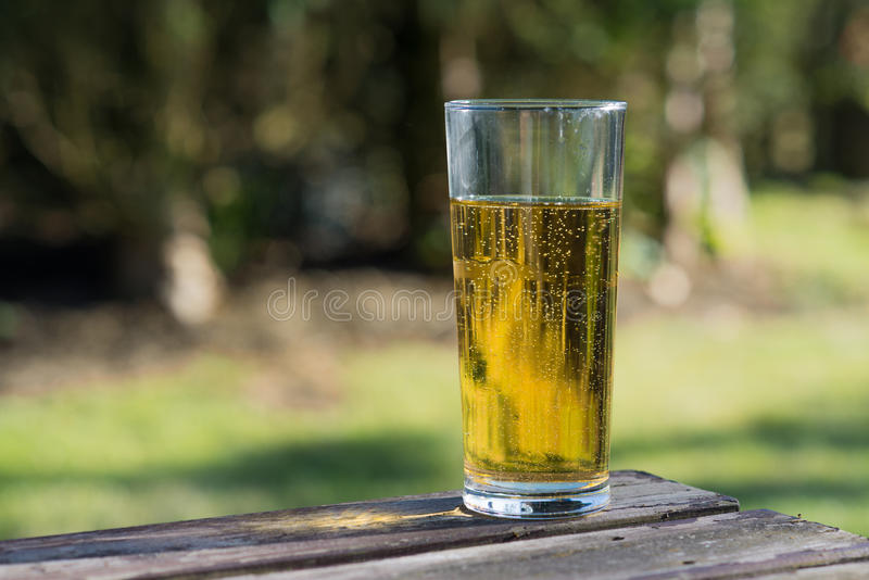 Glass of cider on table. Pint of cider on beer garden table stock image