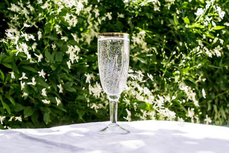 A glass of clean water with bubbles, looks like champagne, stands on a table against the background of blurred flowers. Copy space. For your text. The concept stock photography