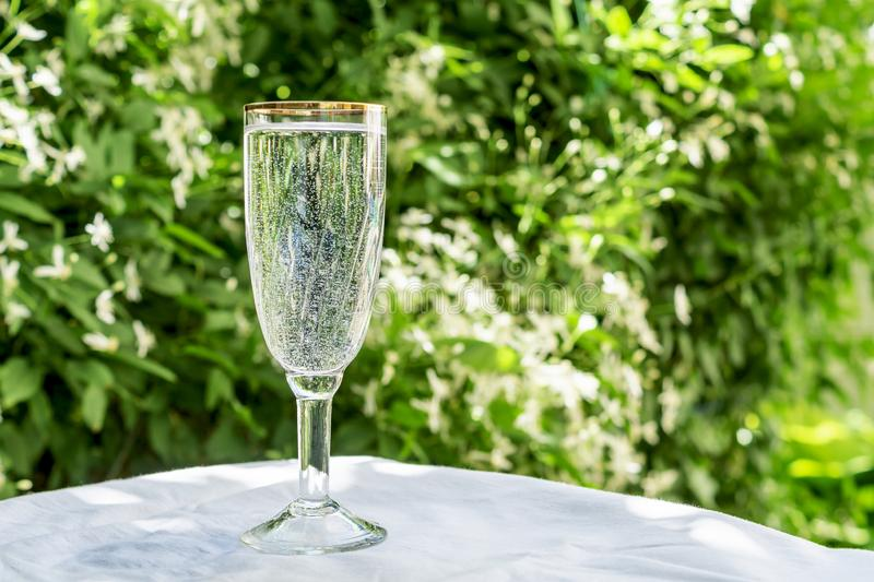 A glass of clean water with bubbles, looks like champagne, stands on a table against the background of blurred flowers. Copy space. For your text. The concept stock photo