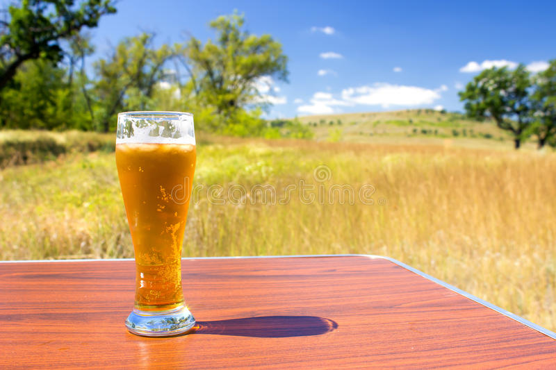 Glass of cold beer stock images