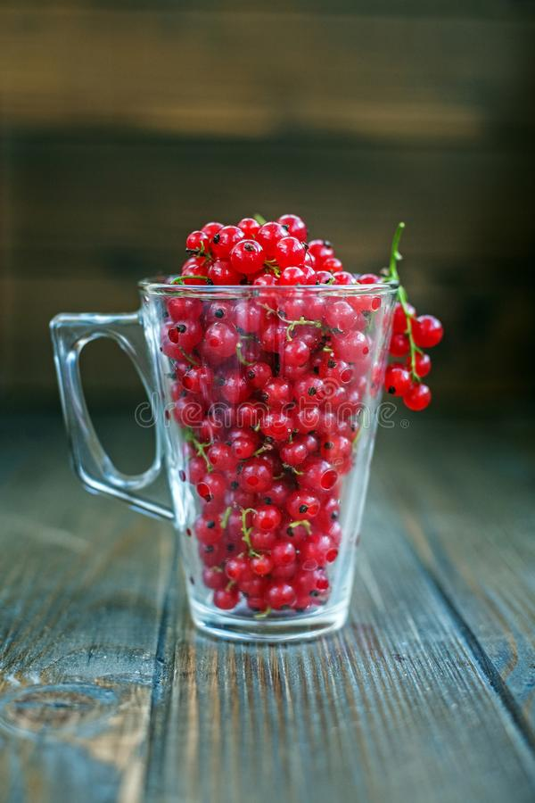 Glass cup with red currant. Wooden background. The concept is he. Althy food, vitamins, diet and vegetarianism royalty free stock photo
