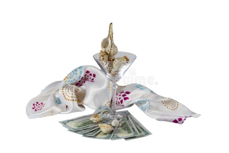Glass dollarsnäckskal royaltyfri fotografi