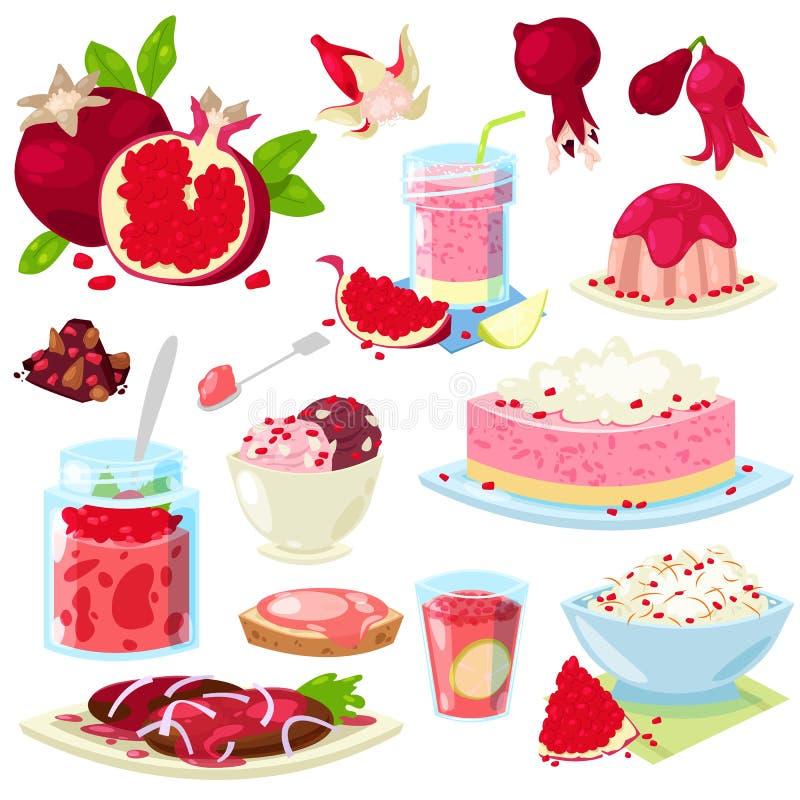 Glass eller kaka för efterrätt för mat för granatäpplevektor ny frukt- med granatrött och söt frukt av granatäpple-trädet royaltyfri illustrationer