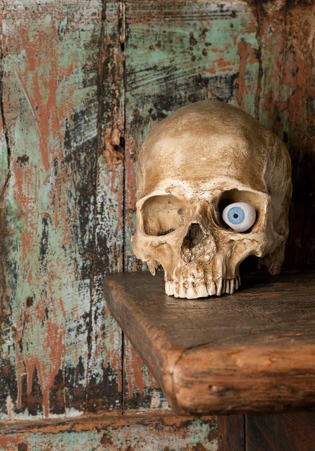 Glass eye in skull royalty free stock photo