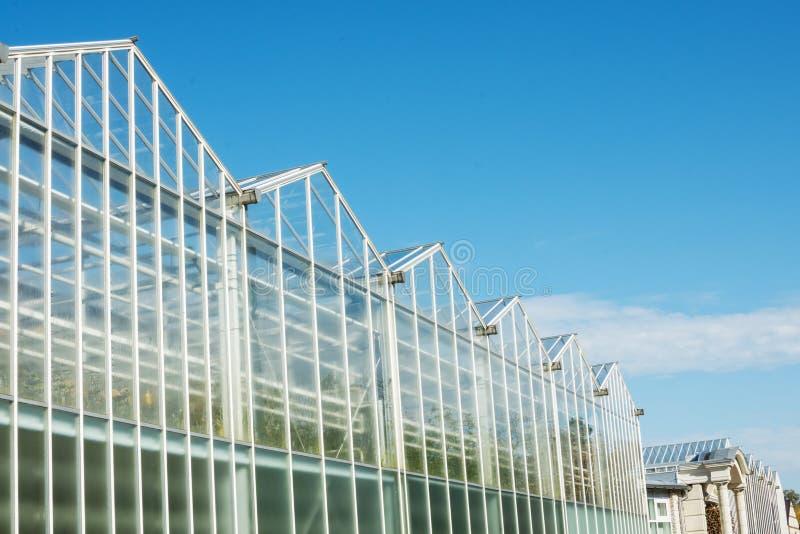Glass fasad av växthuset i trädgård mot blå molnig himmel arkivfoton