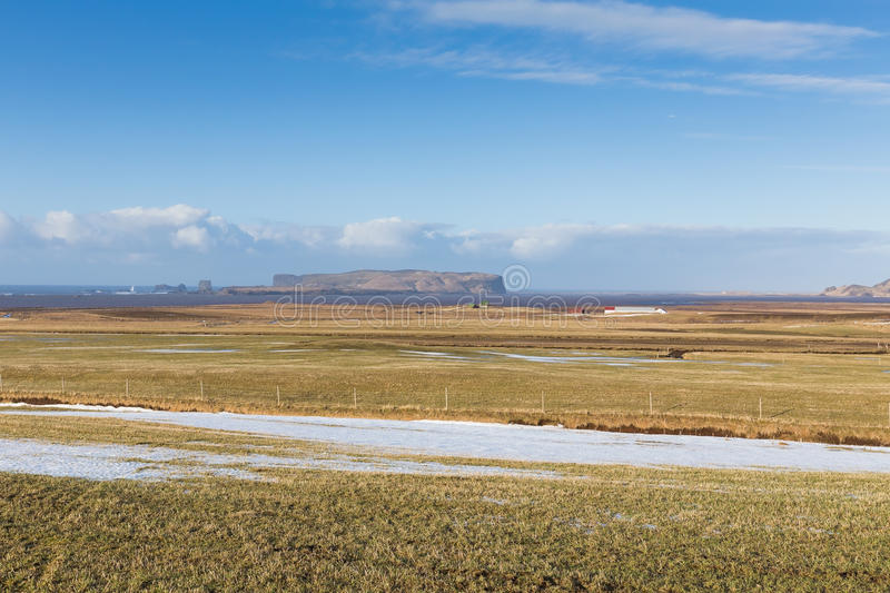 Glass field during winter with clear blue sky country side. Iceland stock images