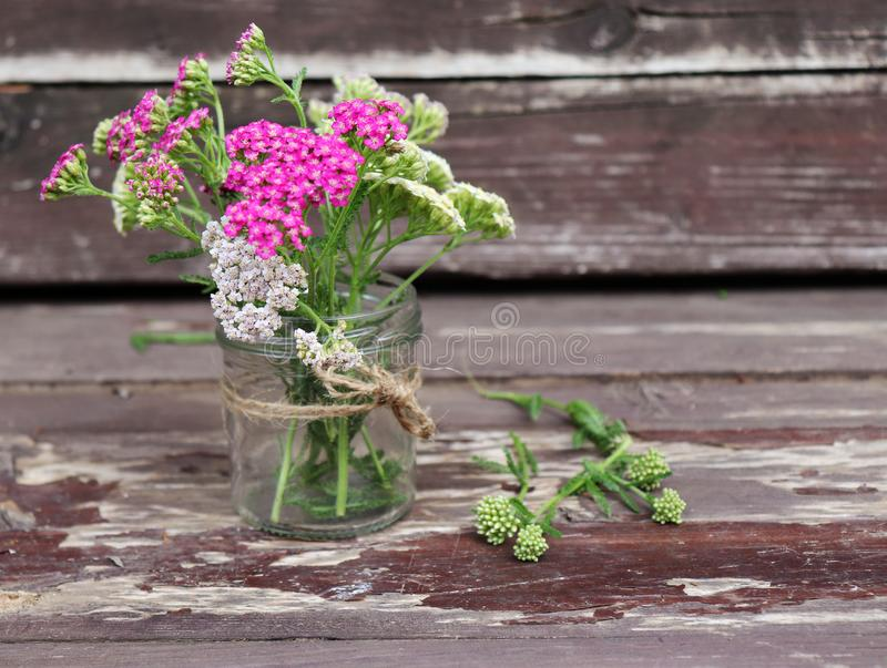 Glass with flowers achillea millefolium, commonly known as yarrow or common yarrow on rustic weathered wooden boards stock photos