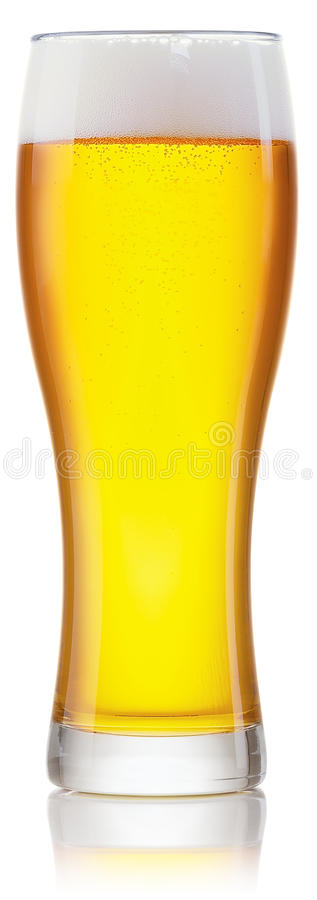 Glass of fresh beer stock image