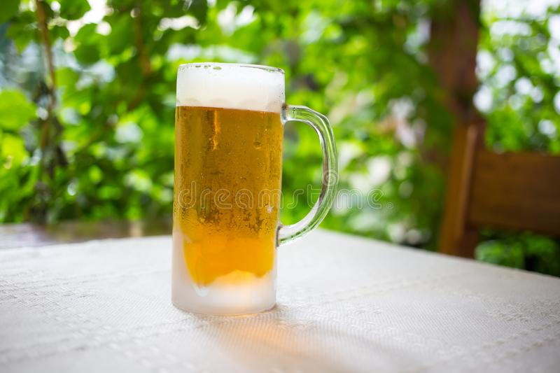 Glass with fresh lager beer. royalty free stock images