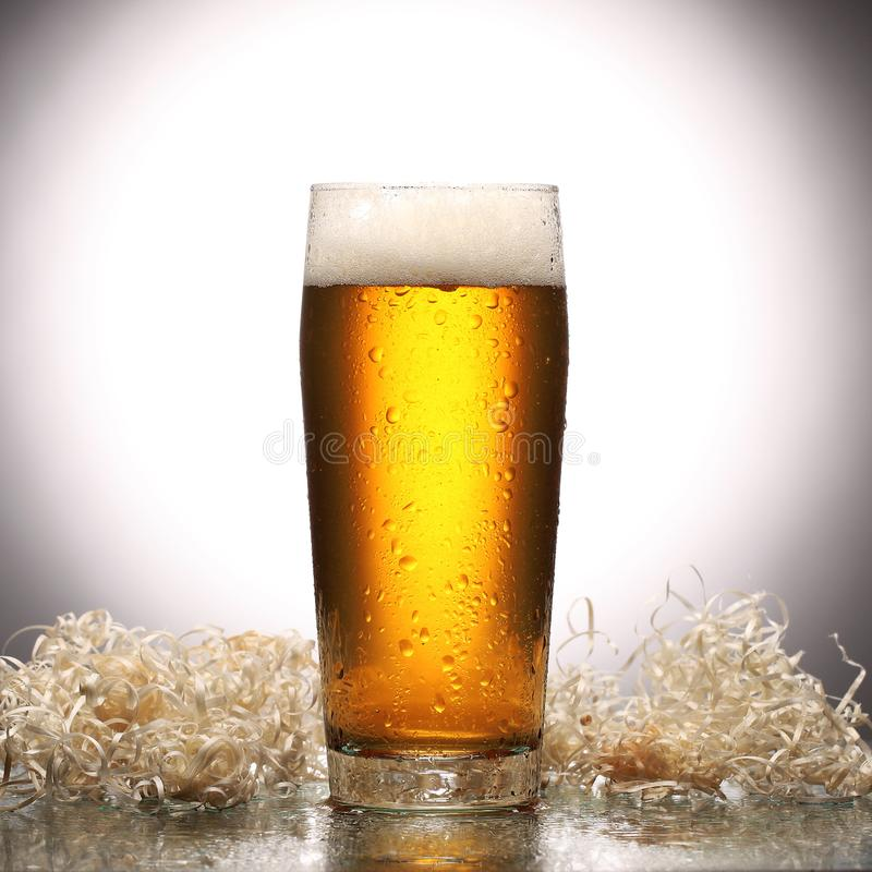 Glass of fresh lager beer on light studio background with reflection stock photo