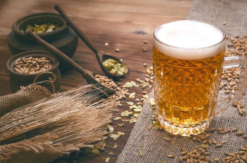 Glass of frothy beer, malt and hop. stock image