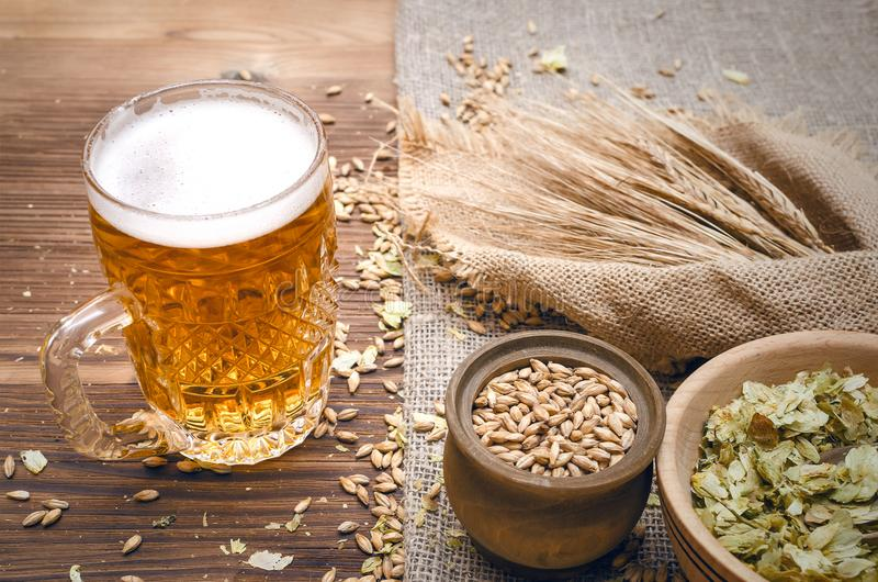 Glass of frothy beer, malt and hop. stock photography