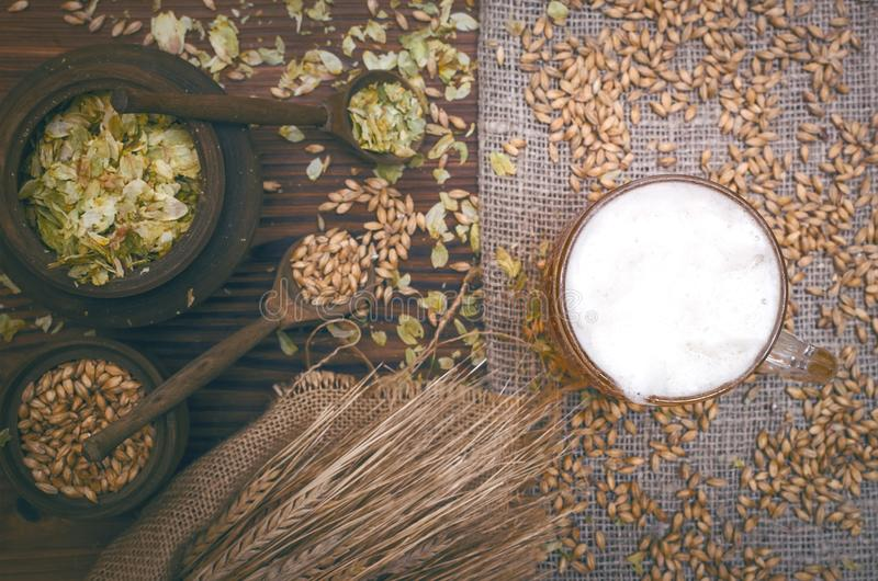 Glass of frothy beer, malt and hop. stock photos