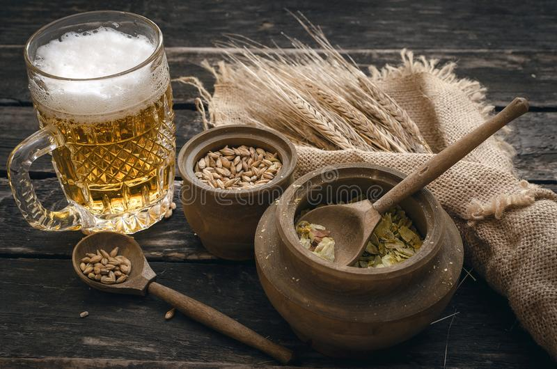 Glass of frothy beer, malt and hop. royalty free stock image