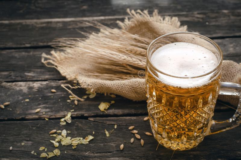 Glass of frothy light beer. royalty free stock images