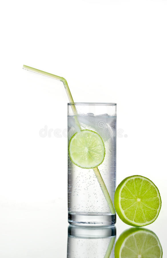 Download Glass Of Gin And Tonic With Ice And Lime Stock Image - Image: 10909907