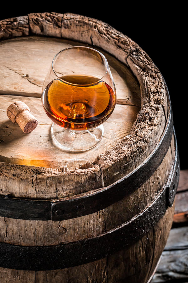 Glass of good cognac in the distillery basement. Isolated on a black background royalty free stock images