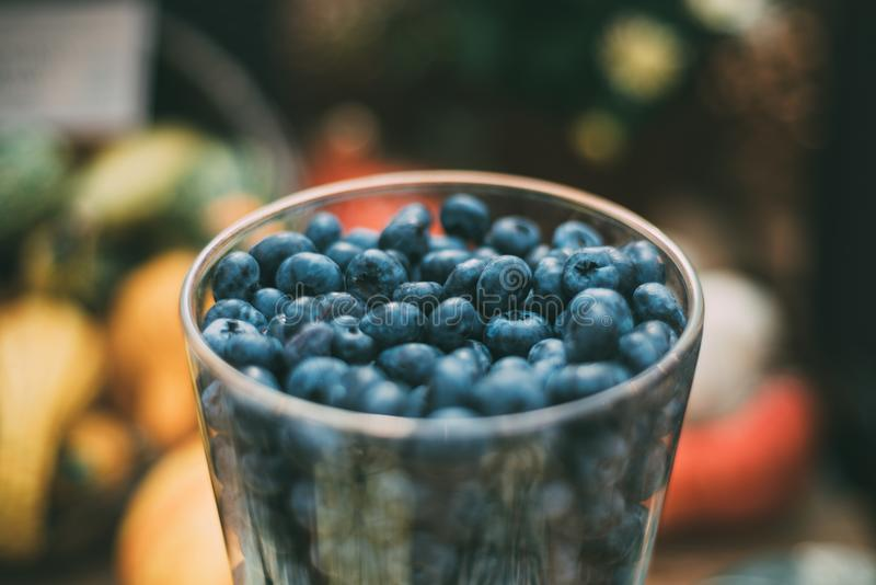 Glass with great bilberry royalty free stock photo