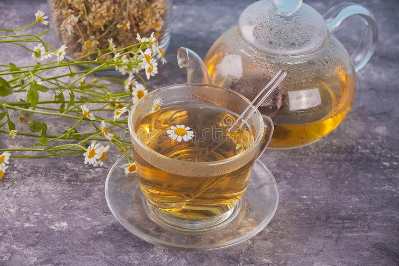 Glass of healthy herbal camomille tea. Naturopathy. Matricaria chamomilla. royalty free stock photography