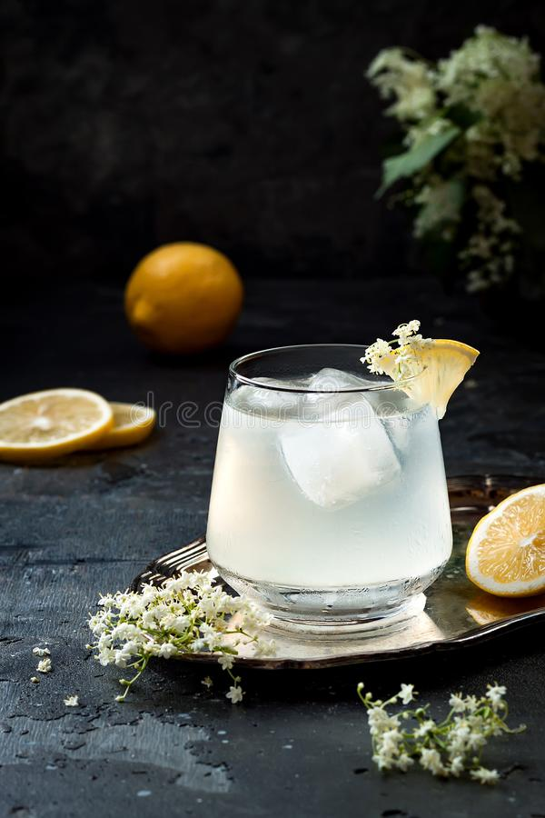 A glass of homemade elderflower gin sour or lemonade garnished with freshly picked elderflowers.  royalty free stock images