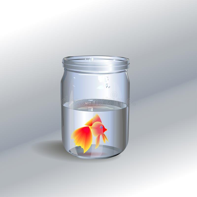Glass_jar_with_a_goldfish royaltyfri bild