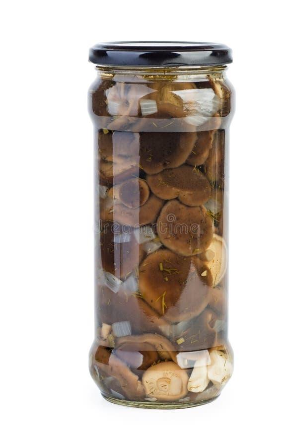Glass jar with marinated milk mushrooms royalty free stock photos
