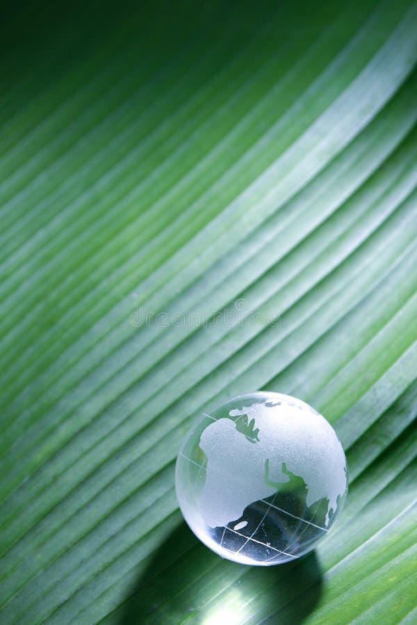 Glass jordklot på bladyttersida arkivbilder