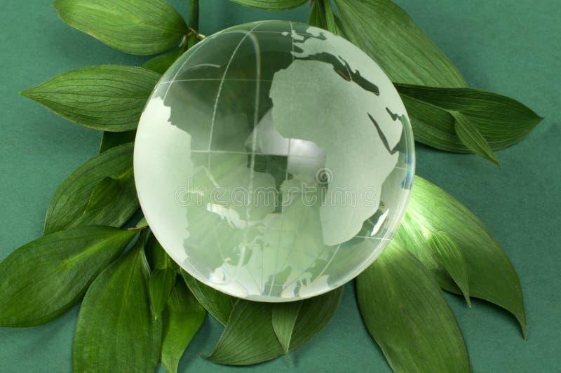 Glass jordklot på den gröna leafen royaltyfria foton