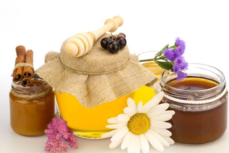 glass krus av ny honung med drizzler och blommor royaltyfri foto
