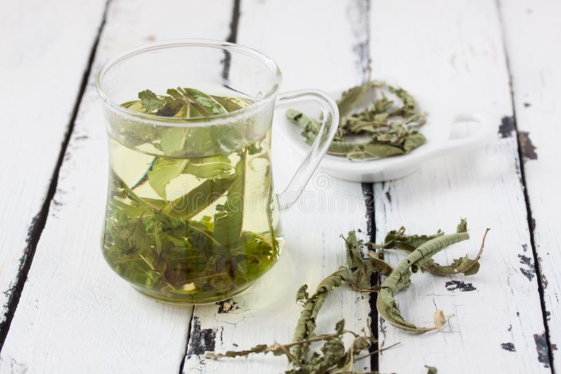 A glass of lemon balm tea stock image
