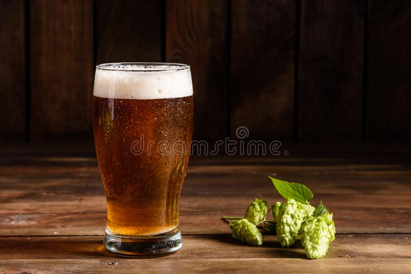 Glass of light beer on a dark pub. Glass beer on wood background with copy space stock photo