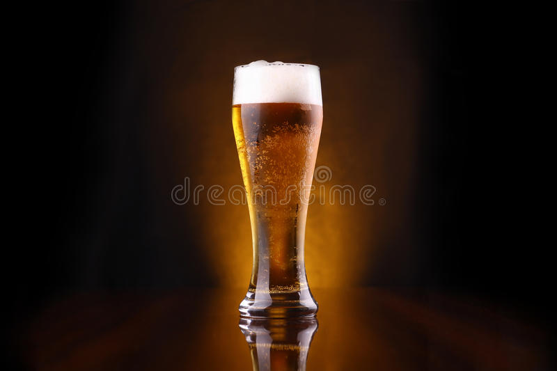 Glass of light beer. Tall glass of light beer on a dark background lit yellow royalty free stock image