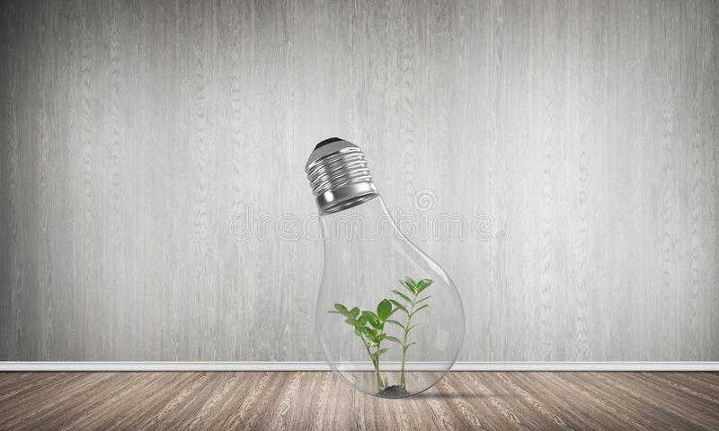 Eco innovations concept by means of lightbulb. Glass lightbulb with green plant inside in empty room with grey wall on background. 3D rendering stock illustration