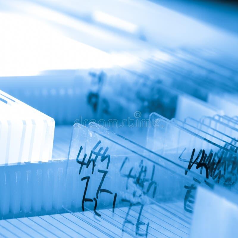 Glass microscope slide stock photos
