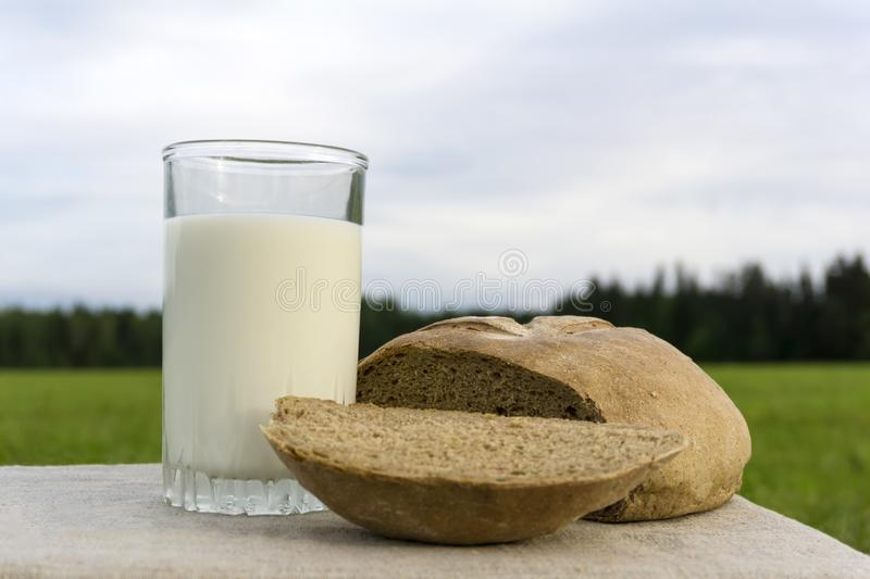 Milk and bread on a meadow royalty free stock images