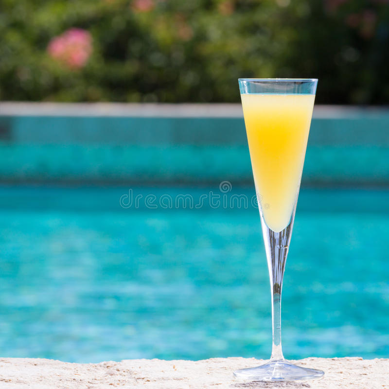 Glass of Mimosa royalty free stock photo