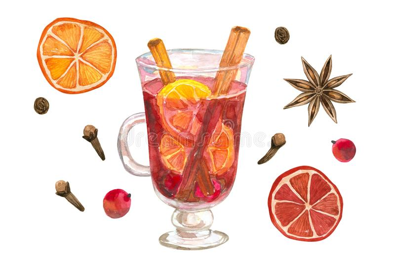 A glass of mulled wine with oranges and cinnamon. Glintwine with winter spices: star anise, clove, pepper.Hand drawn watercolor. A glass of mulled wine with vector illustration