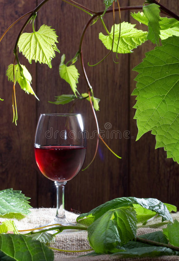 Free Glass Of Red Wine Stock Image - 20463961