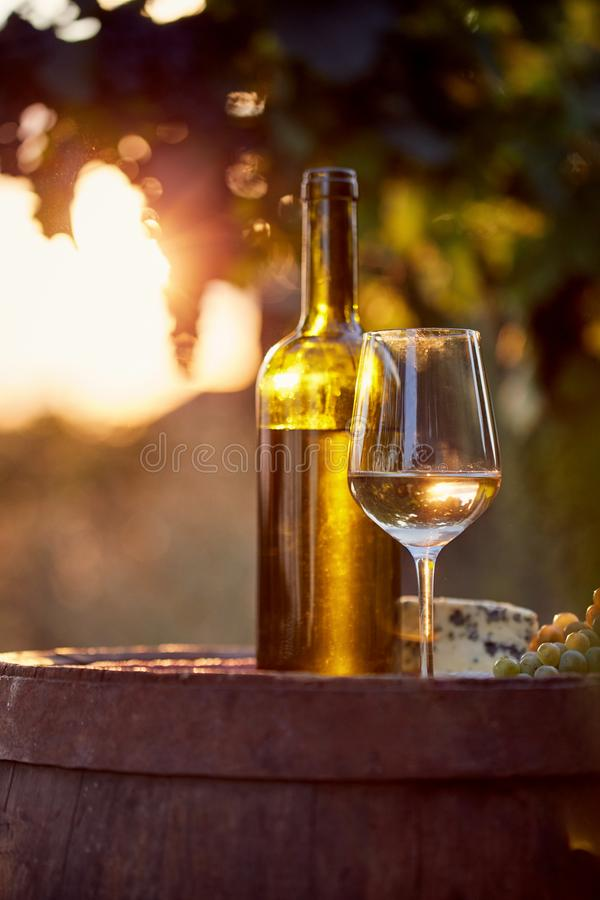 Free Glass Of White Wine And Bottle Royalty Free Stock Photos - 100640568