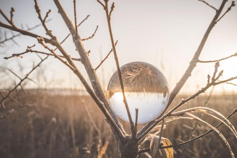 Glass orb in a tree on a cold morning stock photo