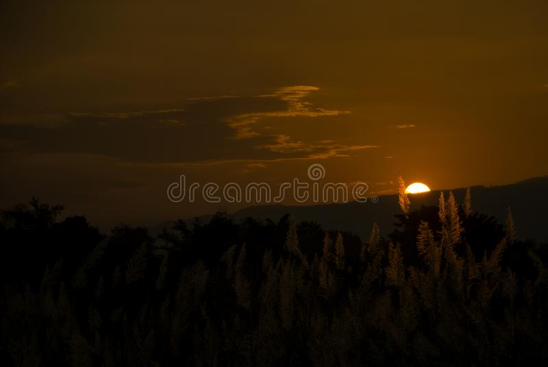 Glass photo silhouette at sunset in twilight , beautiful sundown orange background in the dawn stock images
