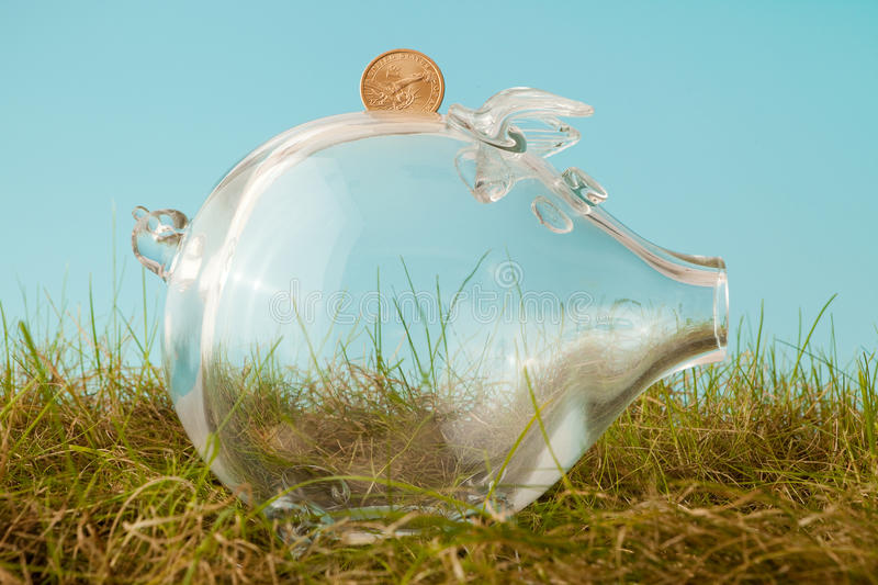 Glass piggy bank in grass stock images