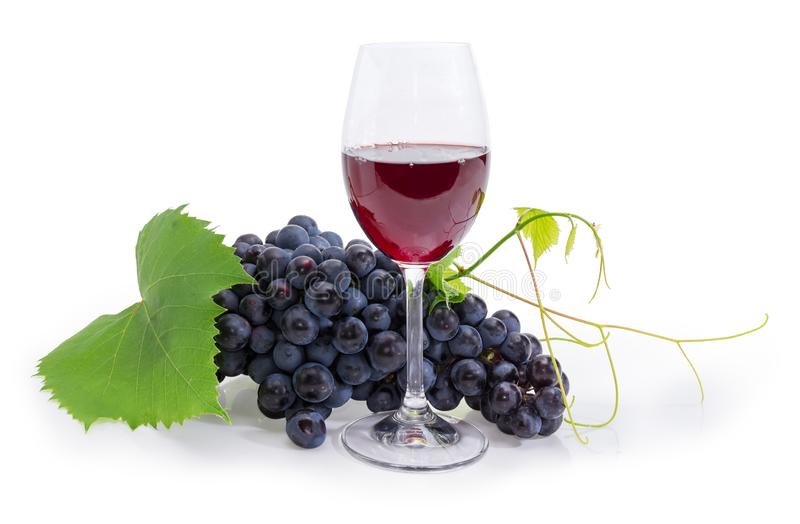 Glass of red wine against of blue grapes cluster royalty free stock photos